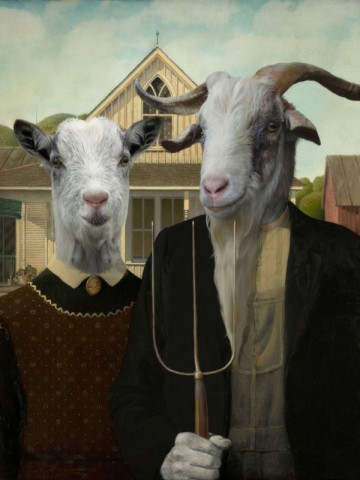 Philippe Tyberghien - AMERICAN GOAT IC