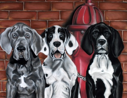Hélène Roux - Puppies Great Danes