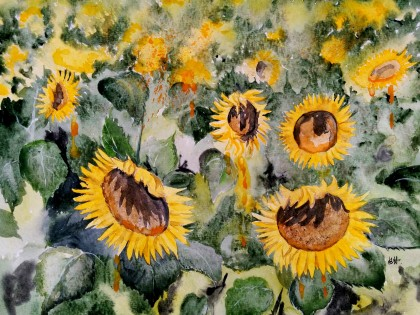 Ewa Rey - Sunflowers in Provence