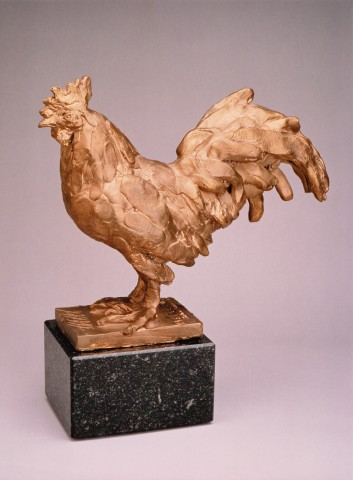 Claudio Barake - ROOSTER